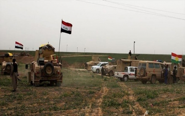 Iraqi Forces, Peshmerga to Form Two Joint Brigades for Disputed Areas
