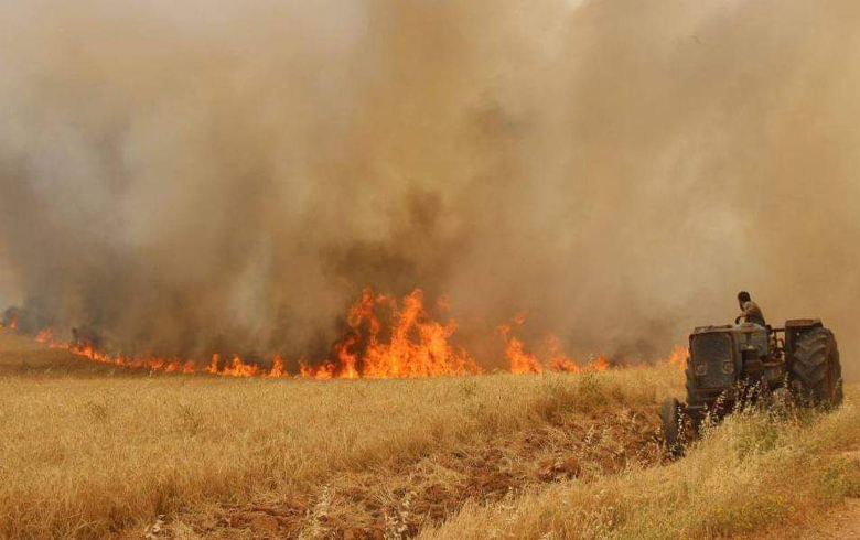 Fires continue to rage devouring hundreds of donums in Hasaka countryside