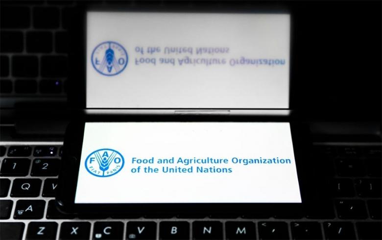 منظمة الأغذية تنظم اجتماعا لتعزيز سبل عيش السوريين