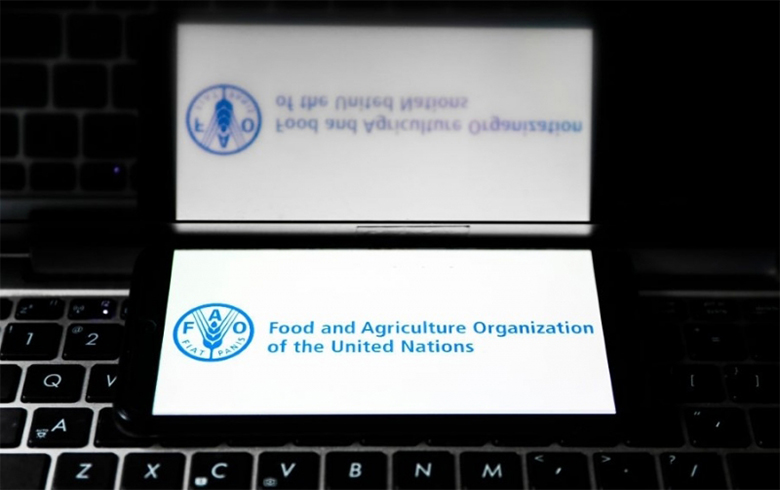 The Food and Agriculture Organization of the United Nations organizes a meeting to enhance the livelihoods of Syrians