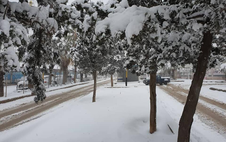 بالصور ... قامشلو تكتسي ببياض الثلج