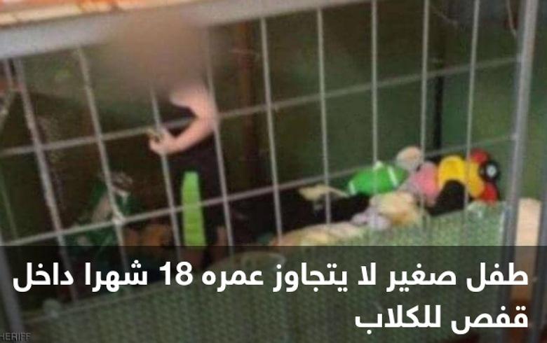 حادثة صادمة... طفل محبوس في قفص للكلاب محاط بالثعابين