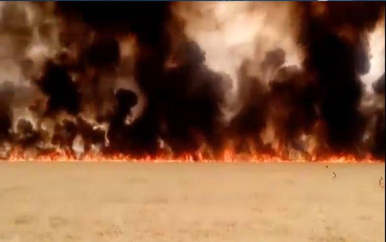 خسائر ب 19 مليار وحرق 40860 هكتارا في كوردستان سوريا