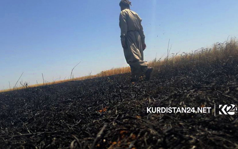 من مخمور إلى خانقين... نار الكراهية تطال الحقول وزراعة كوردستان ترد