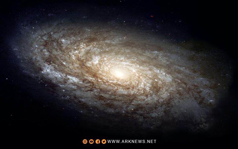 اكتشاف مجموعة ضخمة من النجوم في مجرة درب التبانة، قريبة نسبيا من نظامنا الشمسية