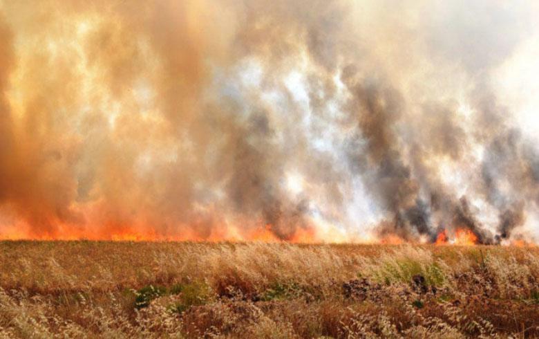 قامشلو .. تفاصيل الحرائق خلال اليومين الماضيين