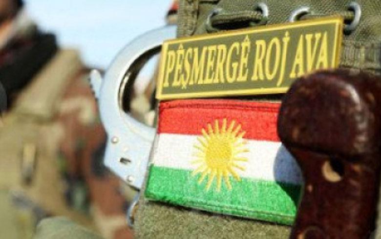Kurdish politician: