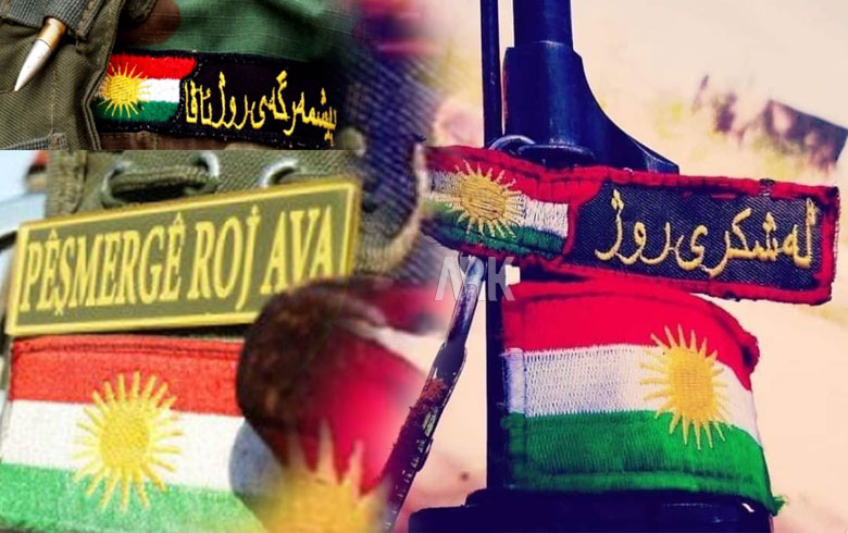 Kurdino mertalê me yekîtî ye, Rêya azadiyê Pêşmergetî ye