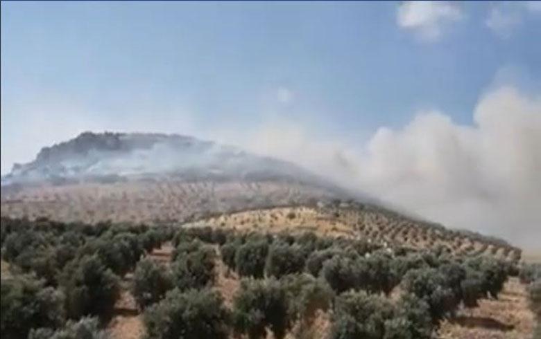 عفرين .. الحرائق تلتهم جبال قريتين في موباتا