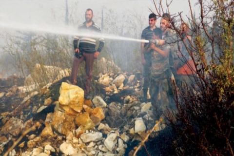 النظام السوري أمام معادلة حرجة: زراعة التبغ أم القمح؟