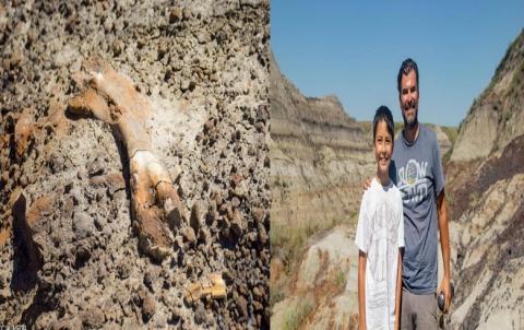 صبي يكتشف حفريات لعظام ديناصور عمرها أكثر من 69 مليون عاما
