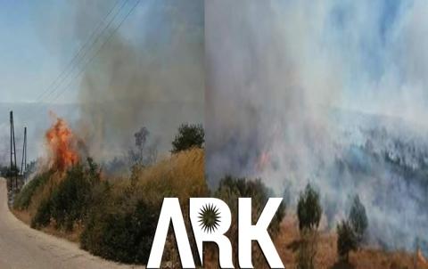 عفرین .. الحرائق تلتهم غابات وأشجار المدنیین فی قری راجو