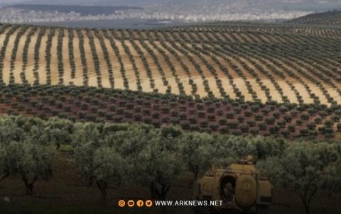 Efrîn... 4 sal in berhemên cotkarên kurd têne dizîn û desteserkirin