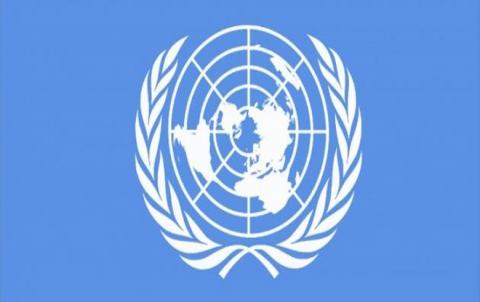 الأمم المتحدة : 50 مليون لاجئا حول العالم نصفهم من العرب