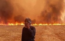 Losses of 19 billion SP and burning 40860 hectares of agricultural land in Kurdistan of Syria