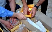 سوريا.. ضبط أكثر من نصف طن من الحشيش المخدر داخل علب حلويات